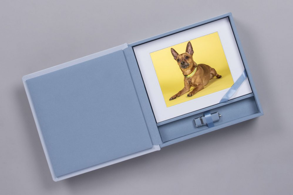 Luxury Pet Folio print Box